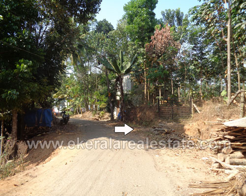 Property Sale at Kattakada 1 Acre Land for Sale at Panayamcode near Kattakada Trivandrum Kerala Properties in Kattakada