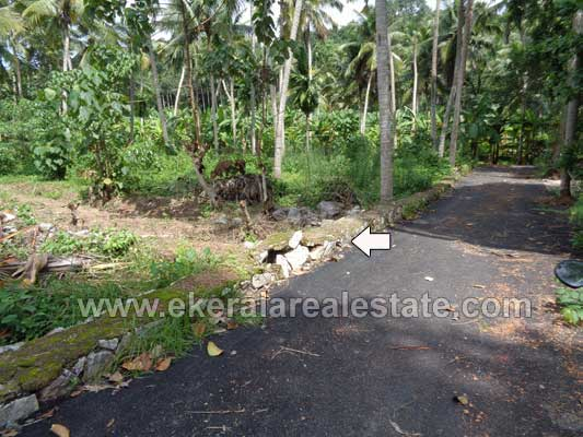 Land and plot near Kariavattom Trivandrum kerala Kazhakuttom Properties