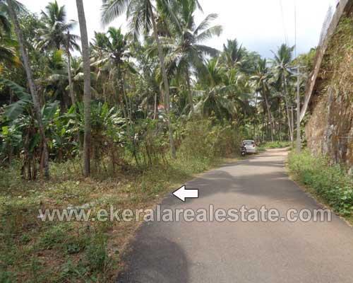Property Sale at Karakulam 14 Cents Residential Plot for Sale at Karakulam Trivandrum Kerala