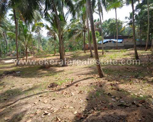 Property Sale at Balaramapuram 30 Cents Land for Sale at Vedivechankovil near Balaramapuram Trivandrum Kerala