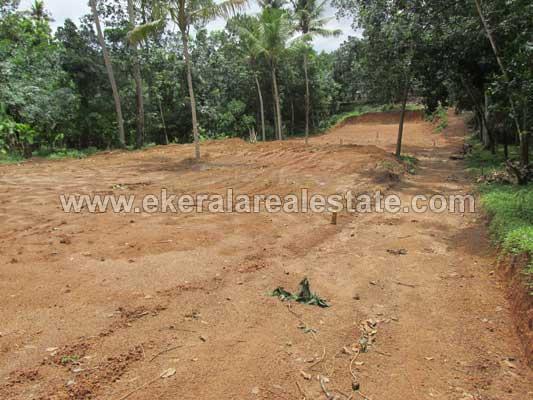 Residential Plots for sale Cherukottukonam Devi Temple Venjaramoodu Trivandrum Kerala