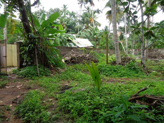 Residential land for sale Pulimoodu Junction Chirayinkeezhu Trivandrum Kerala