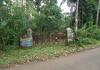 Rubber Land in Vithura Trivandrum Kerala