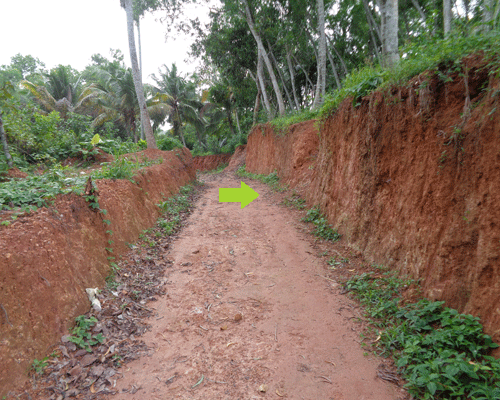 Plots in Chavadinada near Balaramapuram Trivandrum Kerala