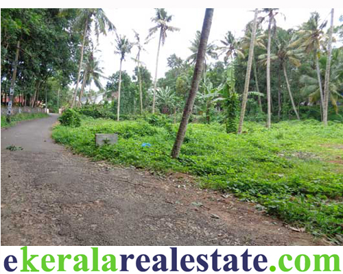 residential land plots sale in nettayam trivandrum kerala real estate