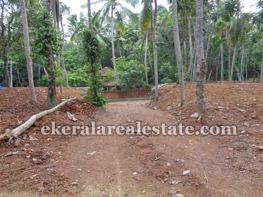 Residential Land and plot in Avanakuzhi Balaramapuram Trivandrum Kerala