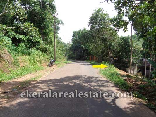 Chenkottukonam Sreekaryam Residential land sale Thiruvananthapuram Properties