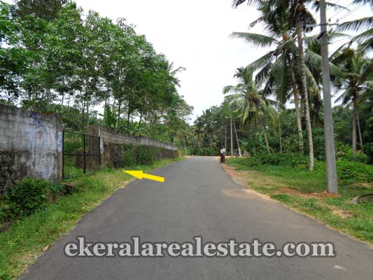 kerala real estate properties Balaramapuram Commercial land sale in Russelpuram