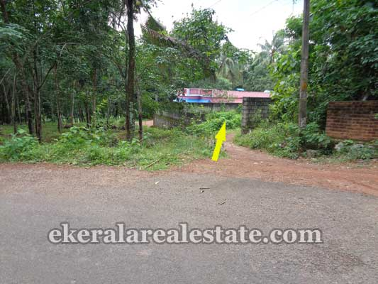 Kallambalam Real Estate residential land plots sale in Kallambalam parakunnu Trivandrum real estate