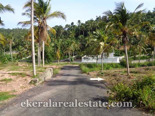 properties sale Thiruvallam Tar Road frontage Land for sale