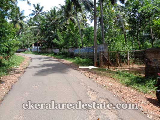 properties sale Kanjiramkulam Bus route frontage land for sale