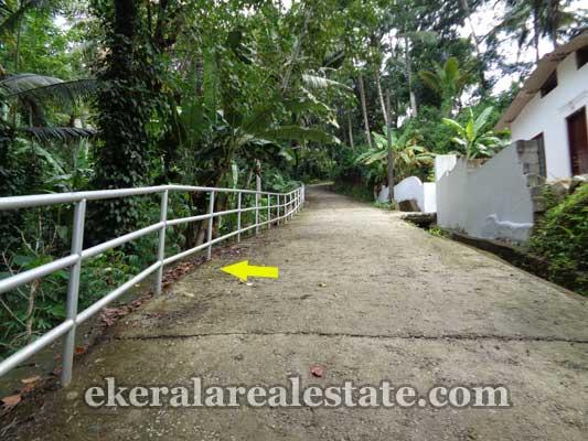 properties sale Kallayam farm land for sale