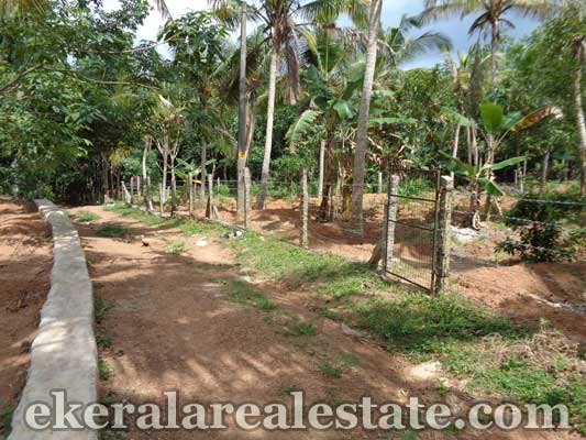 ayira parassala trivandrum land property for sale kerala real estate