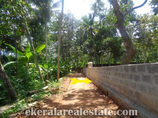Venganoor trivandrum land property for sale kerala real estate for Land for sale in kerala