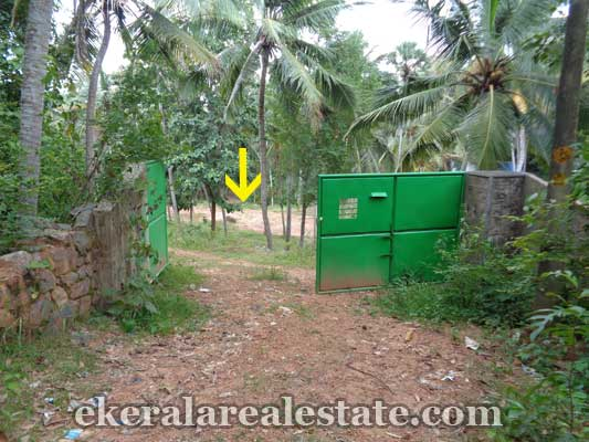 Vellayani trivandrum land property for sale kerala real estate for Land for sale in kerala