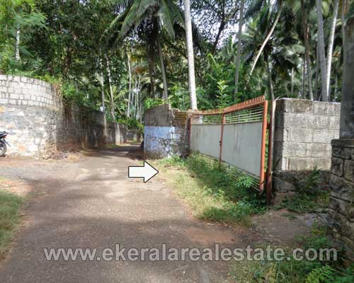 House plot at Infosys Technopark for sale in Trivandrum kerala real estate