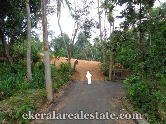 Land plot at Choozhattukotta Pappanamcode for sale in Trivandrum kerala real estate