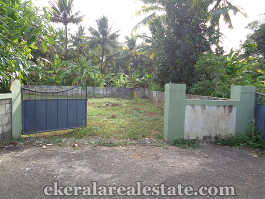 residential plots and land for sale at Choozhampala Ambalamukku trivandrum properties