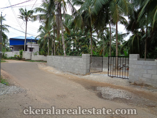 Puliyarakonam real estate land for sale Puliyarakonam properties