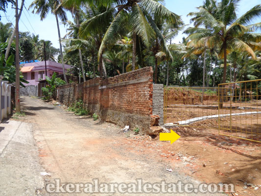 land for sale at  Neyyattinkara trivandrum kerala real estate