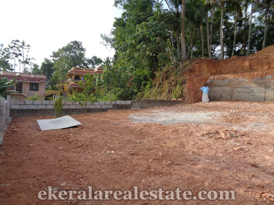7 Cents land for sale at Vazhayila near Peroorkada trivandrum kerala real estate