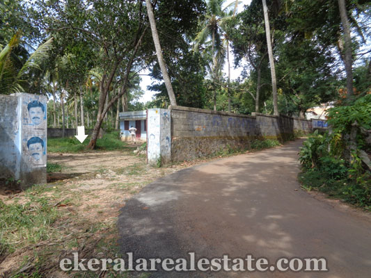 55 Cents land for sale at Peringamala Balaramapuram trivandrum kerala real estate