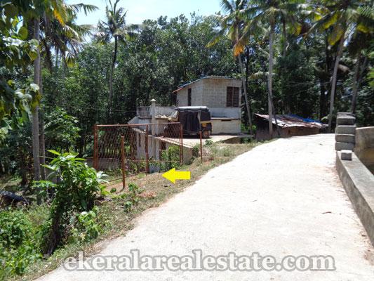 land for sale at  Neyyattinkara Manchavilakom trivandrum kerala real estate properties