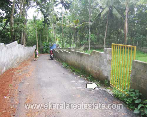 land for sale at Njandoorkonam Sreekaryam trivandrum kerala real estate properties