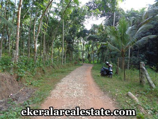 kerala-real-estate-trivandrum-properties-land-for-sale-in-kandala-kattakada-trivandrum