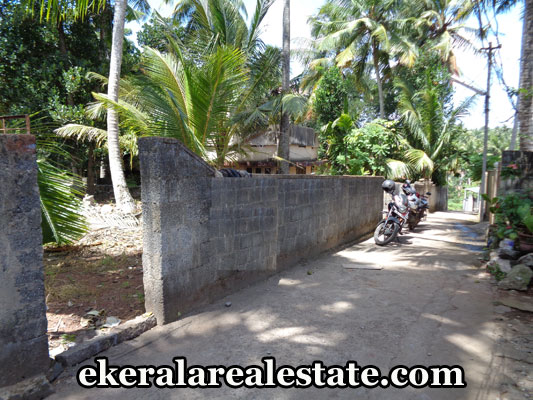 kerala-real-estate-trivandrum-properties-land-for-sale-in-maruthankuzhy-trivandrum