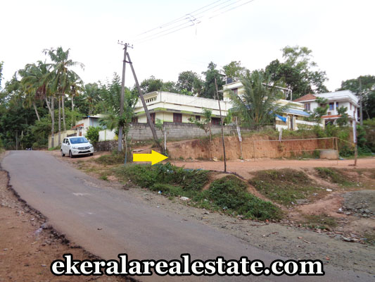kerala-real-estate-trivandrum-properties-land-plots-for-sale-in-nedumangad-trivandrum
