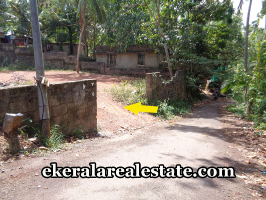 pravachambalam-real-estate-land-plots-sale-at-pravachambalam-tivandrum-real-estate-kerala