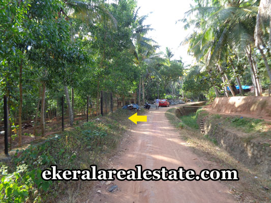 vizhinjam-real-estate-land-plots-sale-at-vizhinjam-uchakkada-tivandrum-real-estate-kerala