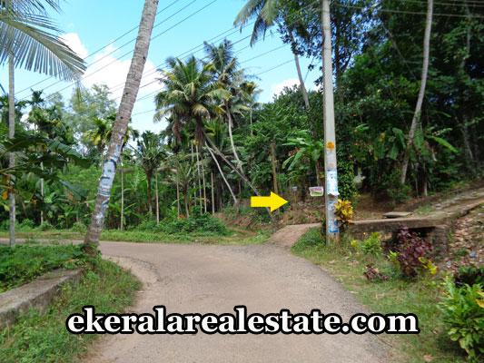 nedumangad-real-estate-land-plots-sale-at-nedumangad-tivandrum-real-estate-kerala
