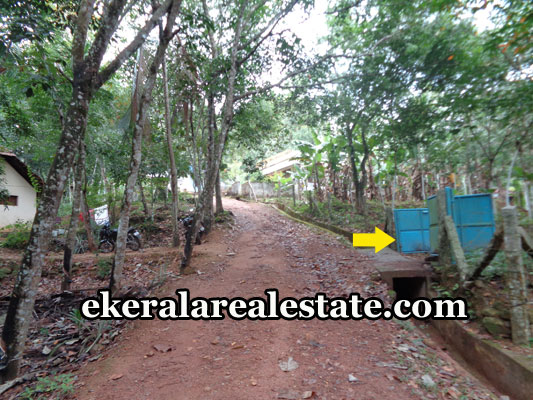 kerala-real-estate-trivandrum-kattakada-land-plots-sale-trivandrum-properties