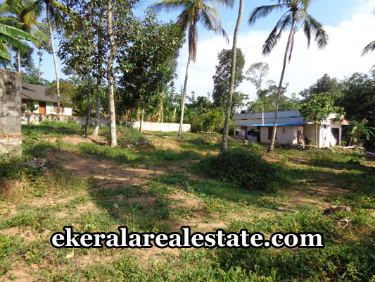 kerala-real-estate-trivandrum-nedumangad-land-plots-sale-trivandrum-properties