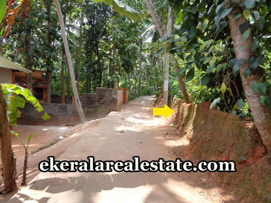 kerala-real-estate-trivandrum-neyyattinkara-land-plots-sale-trivandrum-real-estate