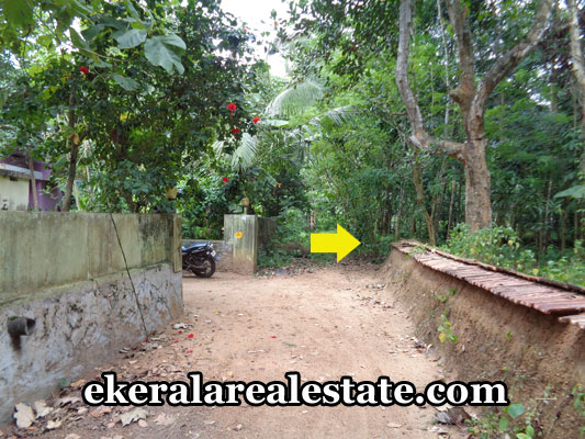 kerala-real-estate-trivandrum-kilimanoor-land-plots-sale-trivandrum-real-estate