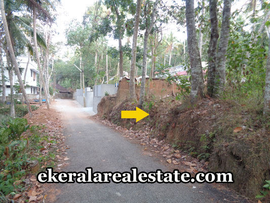 balaramapuram-properties-land-plots-sale-in-balaramapuram-trivandrum-kerala-real-estate