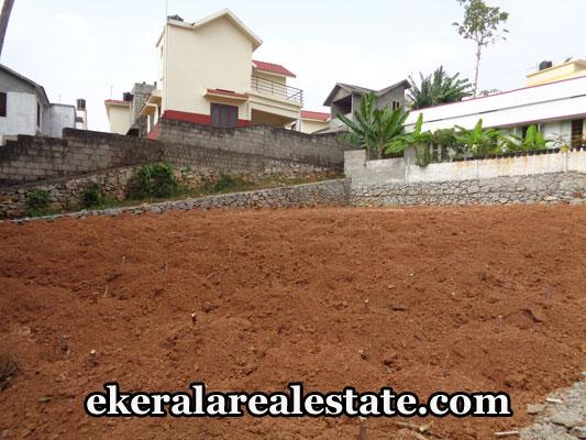 peyad-properties-land-plots-sale-in-peyad-trivandrum-kerala-real-estate