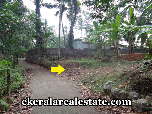 ottasekharamangalam-properties-land-plots-sale-in-ottasekharamangalam-trivandrum-kerala-real-estate