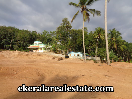 kattakada-properties-land-plots-sale-in-kallikadu-kattakada-trivandrum-kerala-real-estate