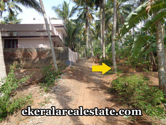 neyyattinkara-properties-land-plots-sale-in-vazhuthoor-neyyattinkara-trivandrum-kerala-real-estate