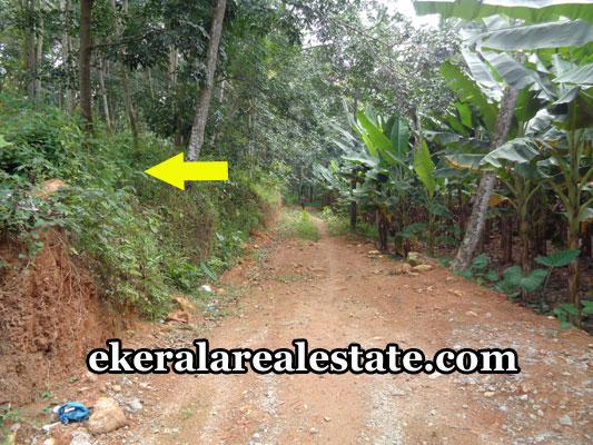 thiruvananthapuram-real-estate-properties-land-plots-for-sale-in-pothencode-thiruvananthapuram-kerala-real-estate