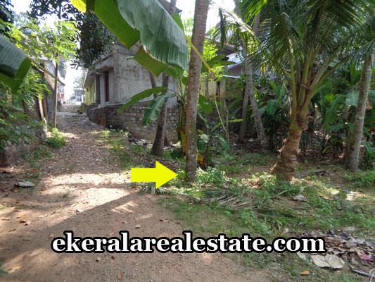 thiruvananthapuram-real-estate-land-for-sale-at-kilimanoor-thiruvananthapuram-real-estate-properties