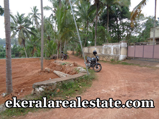 peyad thiruvananthapuram real estate land house plots sale at peyad kerala real estate