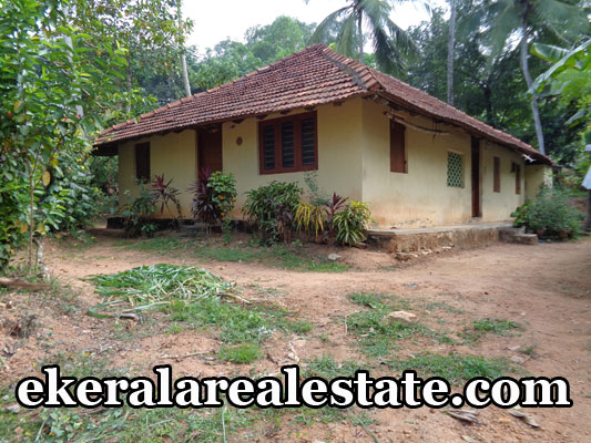 Peyad Kollamkonam thiruvananthapuram real estate land house plots sale at Peyad Kollamkonam kerala real estate