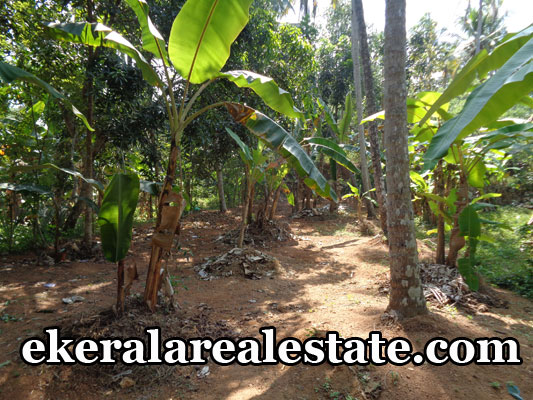 attingal real estate properties thiruvananthapuram real estate land house plots 20 cents sale at attingal kerala real estate