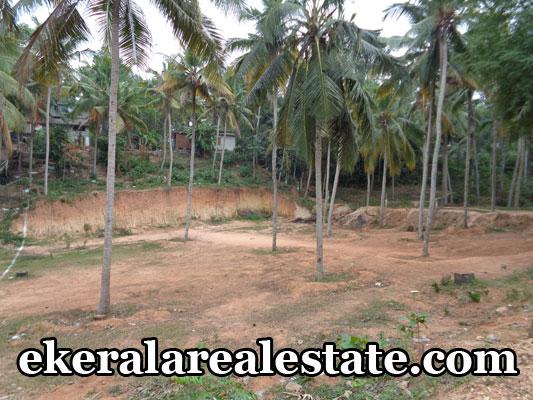 urgent sale land plots sale at vellayani ookode trivandrum vellayani real estate properties trivandrum kerala