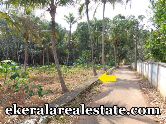 urgent sale land plots sale at Kallambalam 18 cents trivandrum Kallambalam real estate properties trivandrum kerala
